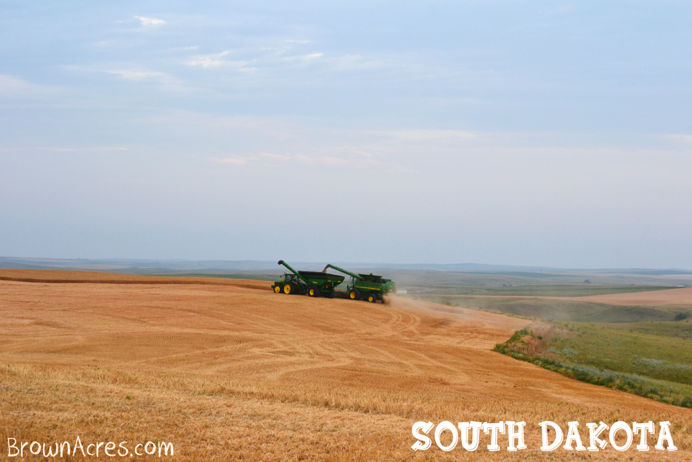 Brown-Acres-Harvesting-South-Dakota