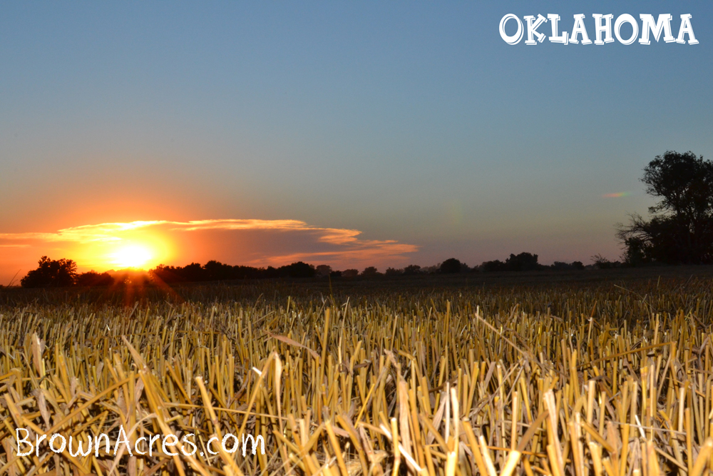 Brown-Acres-Oklahoma-Sunset