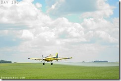 Aerial spraying fungicide on flax in North Dakota