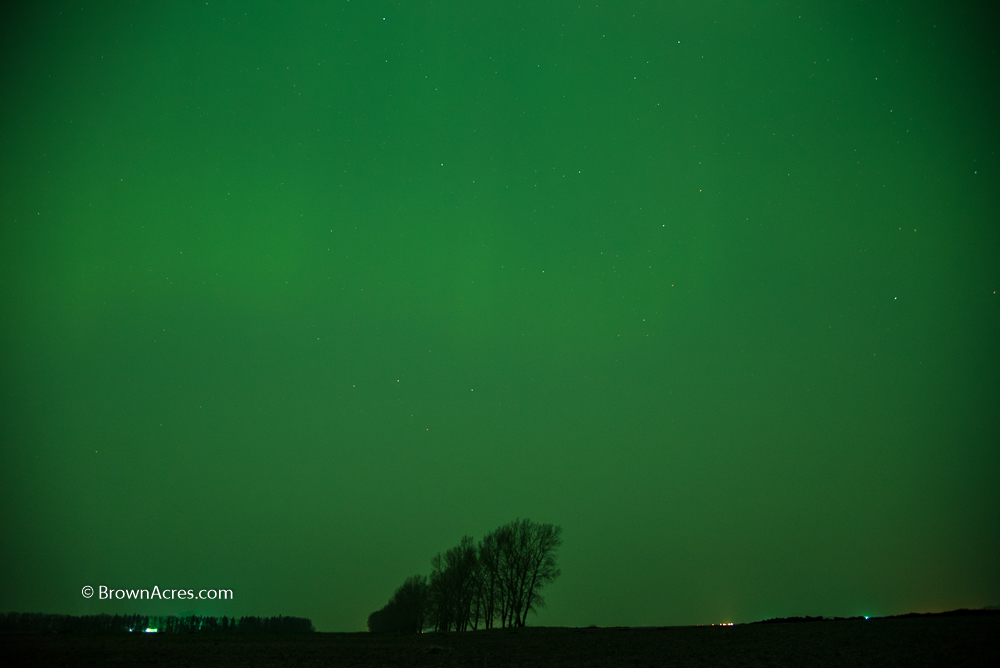 Smoky northern lights. The whole sky was green for hours!
